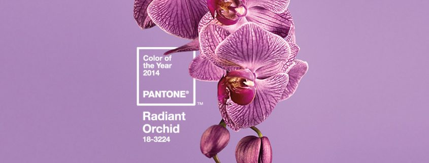 Color-of-the-year-2014